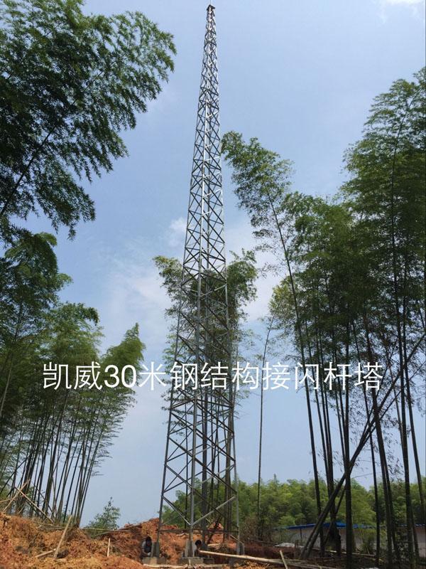 30米钢结构避雷针1.jpg